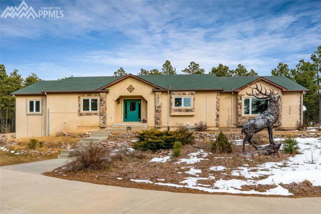 17905 Martingale Road, Monument, CO 80132 (#4970235) :: Colorado Home Finder Realty