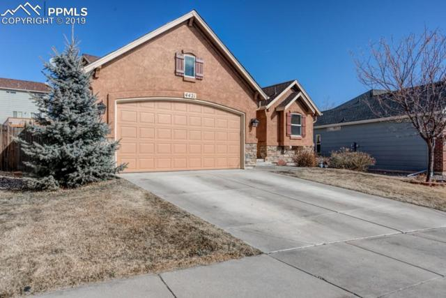 4421 Range Creek Drive, Colorado Springs, CO 80922 (#4970314) :: The Kibler Group