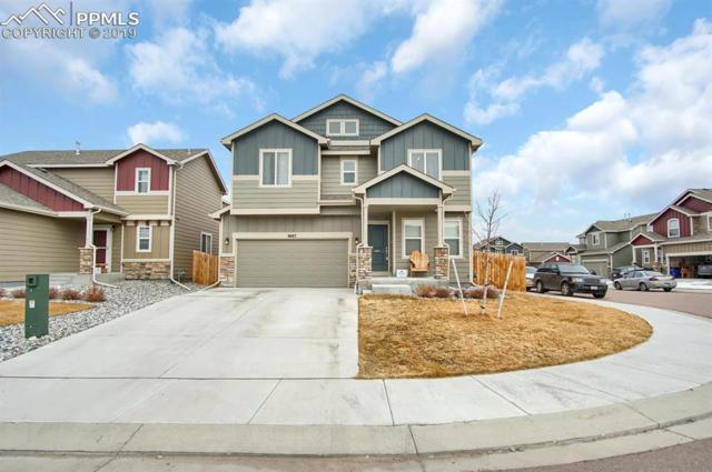 9683 Silver Stirrup Drive, Colorado Springs, CO 80925 (#4970415) :: The Dunfee Group - powered by eXp Realty