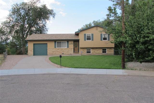 204 Cielo Vista Street, Colorado Springs, CO 80911 (#4972666) :: 8z Real Estate