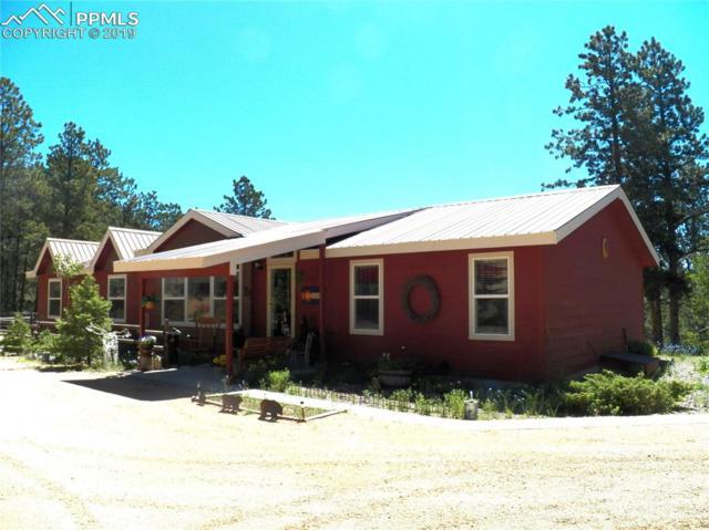 3875 Pathfinder Road, Florissant, CO 80816 (#4977433) :: 8z Real Estate