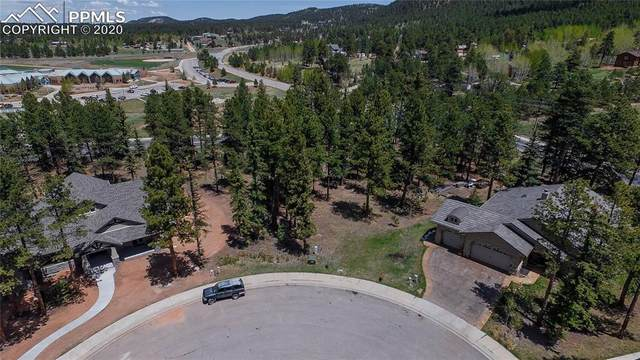 650 Chipmunk Drive, Woodland Park, CO 80863 (#4981812) :: The Scott Futa Home Team