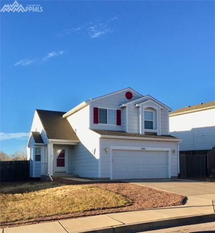 1263 Ancestra Drive, Fountain, CO 80817 (#4982518) :: The Hunstiger Team