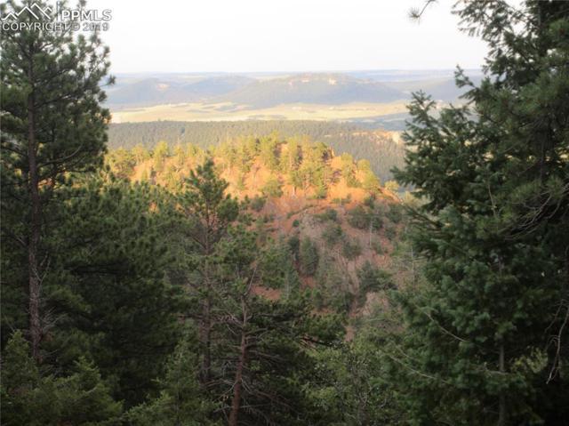 13948 Boulder Lane, Larkspur, CO 80118 (#4983213) :: Compass Colorado Realty
