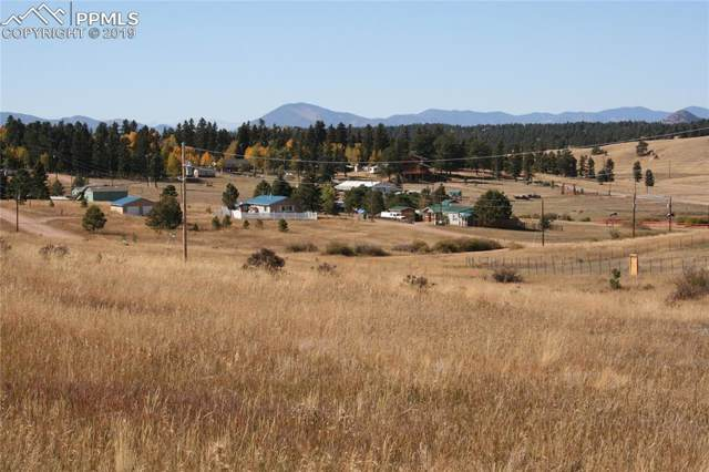829 & 845 Maid Marian Drive, Divide, CO 80814 (#4985008) :: CC Signature Group