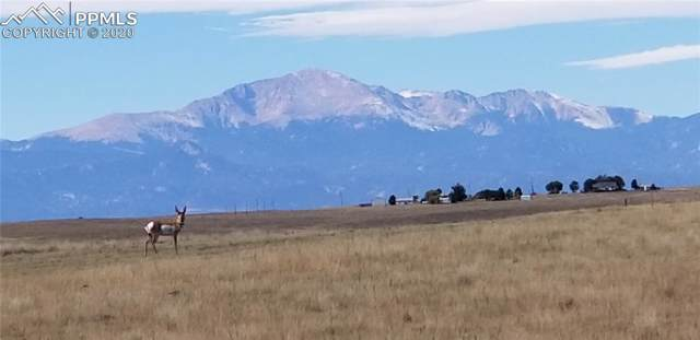 19031 Good Life View, Calhan, CO 80808 (#4989655) :: Finch & Gable Real Estate Co.