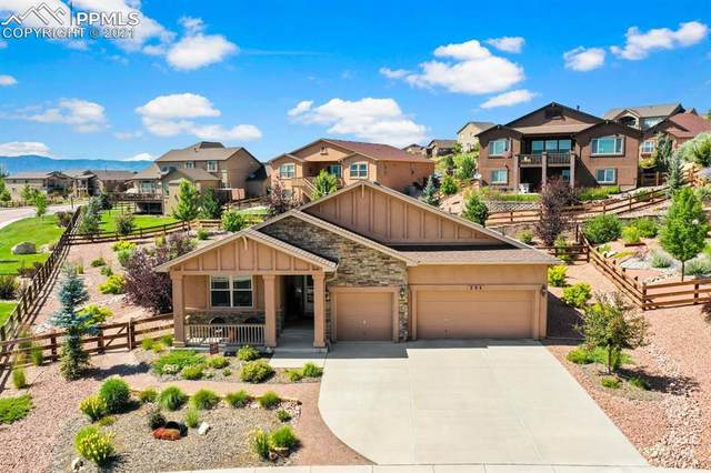 204 Reading Way, Monument, CO 80132 (#4989723) :: Fisk Team, eXp Realty