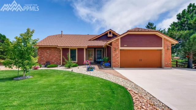 295 Desert Inn Way, Colorado Springs, CO 80921 (#4994611) :: The Treasure Davis Team