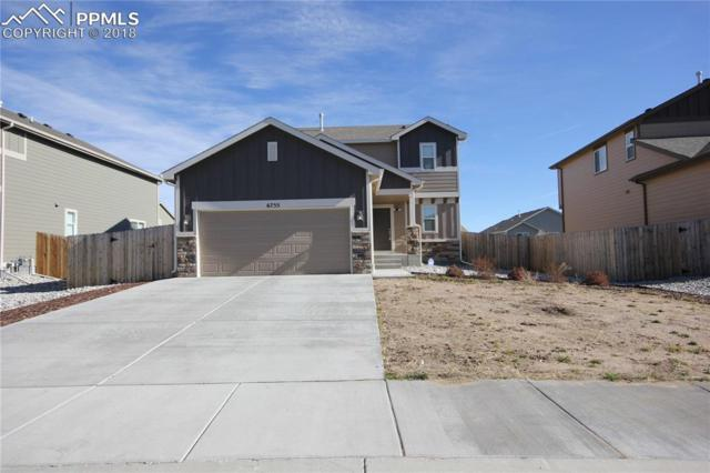 6755 Phantom Way, Colorado Springs, CO 80925 (#4999935) :: Harling Real Estate