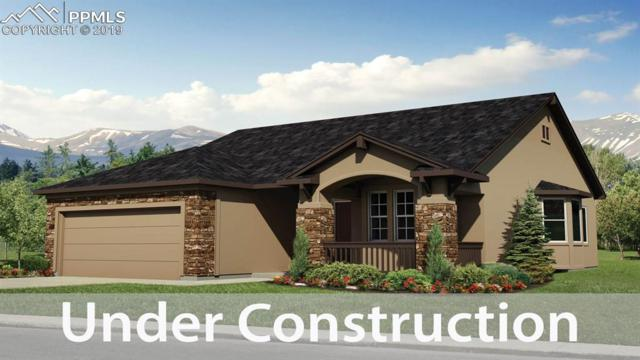 6055 Trappers Tale Court, Colorado Springs, CO 80923 (#5000584) :: Tommy Daly Home Team