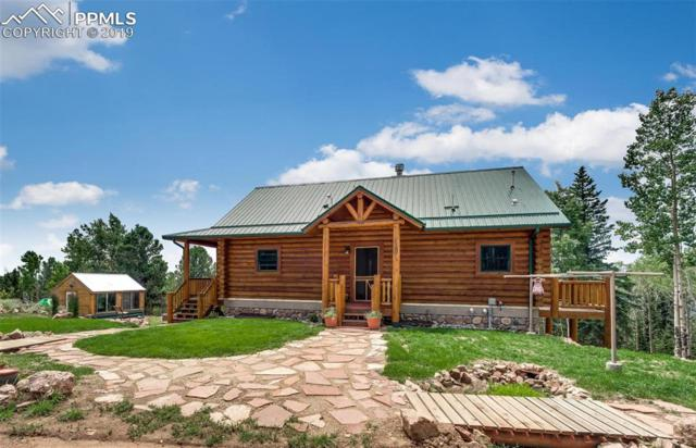 6837 Gold Camp Road, Cripple Creek, CO 80813 (#5003010) :: The Peak Properties Group
