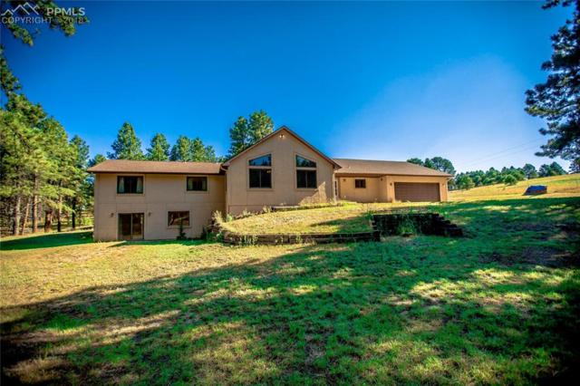 3260 Arena Road, Colorado Springs, CO 80921 (#5003316) :: Jason Daniels & Associates at RE/MAX Millennium