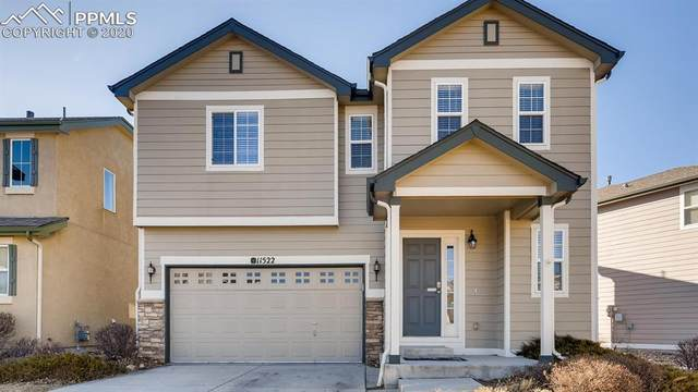 11522 Black Maple Lane, Colorado Springs, CO 80921 (#5005813) :: 8z Real Estate