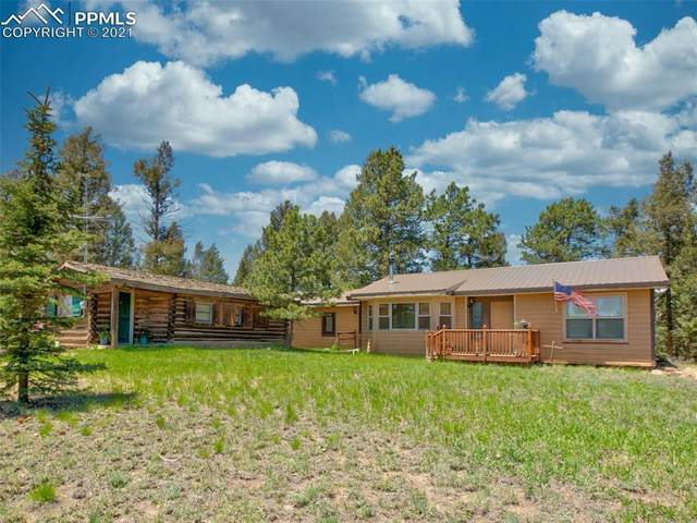 1443 County Road 512, Divide, CO 80814 (#5005959) :: Tommy Daly Home Team