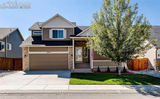 4655 Katahdin Way, Colorado Springs, CO 80911 (#5011195) :: Tommy Daly Home Team