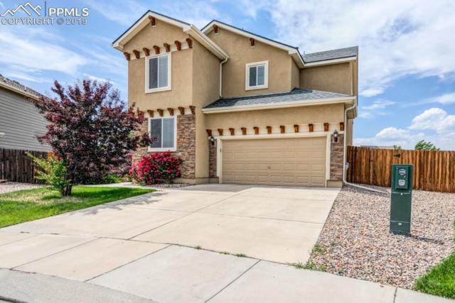 6296 Bearcat Loop, Colorado Springs, CO 80925 (#5011824) :: The Daniels Team