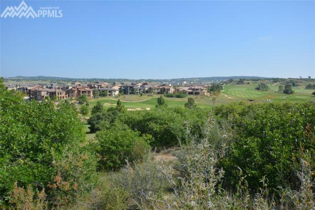 1304 Vine Cliff Heights, Colorado Springs, CO 80921 (#5014059) :: The Daniels Team
