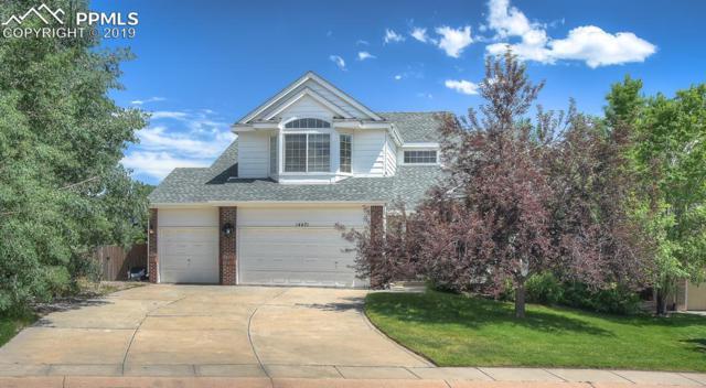 14471 Tierra Drive, Colorado Springs, CO 80921 (#5017042) :: Action Team Realty