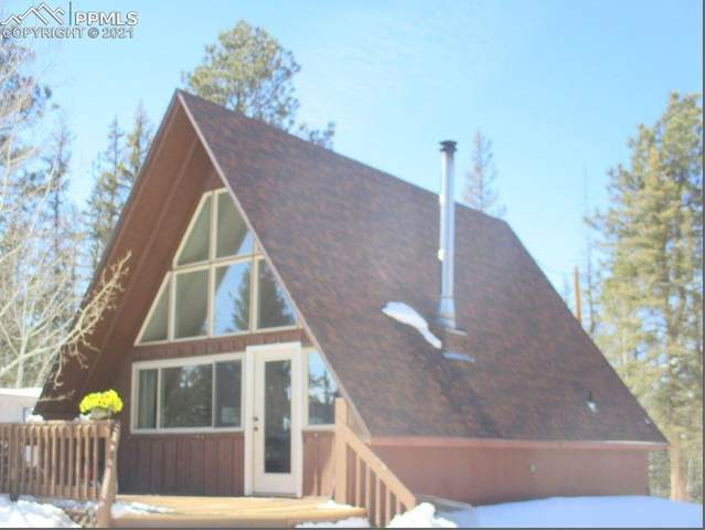 117 Rainbow Trail, Divide, CO 80814 (#5023380) :: The Gold Medal Team with RE/MAX Properties, Inc