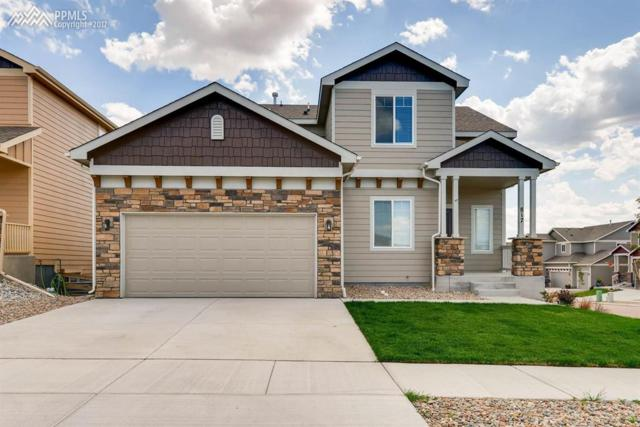 817 Salmon Pond Way, Colorado Springs, CO 80921 (#5024313) :: 8z Real Estate