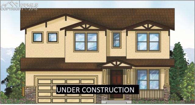 5652 Cubbage Drive, Colorado Springs, CO 80924 (#5026274) :: Venterra Real Estate LLC
