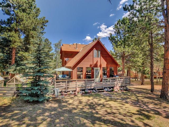 133 Bluebird Hill Road, Woodland Park, CO 80863 (#5029997) :: The Peak Properties Group