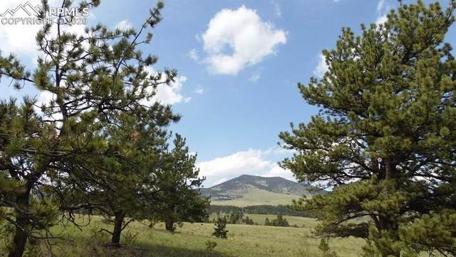571 Old Kathleen Trail, Guffey, CO 80820 (#5030542) :: The Dixon Group
