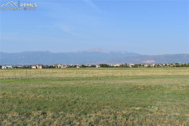9901 Lochwinnoch Lane, Colorado Springs, CO 80908 (#5031969) :: Action Team Realty