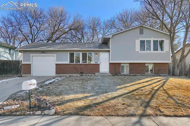 7245 Hermits Hollow Court, Colorado Springs, CO 80911 (#5032531) :: HomeSmart