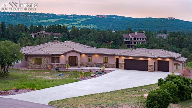 3828 Roberts Ridge Place, Monument, CO 80132 (#5035971) :: Tommy Daly Home Team