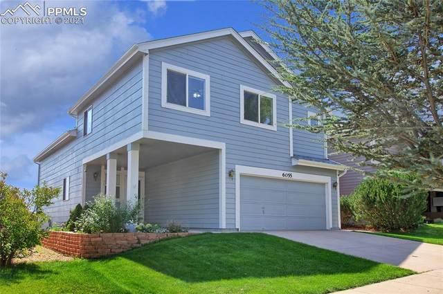 6055 Faxon Court, Colorado Springs, CO 80922 (#5039318) :: Finch & Gable Real Estate Co.
