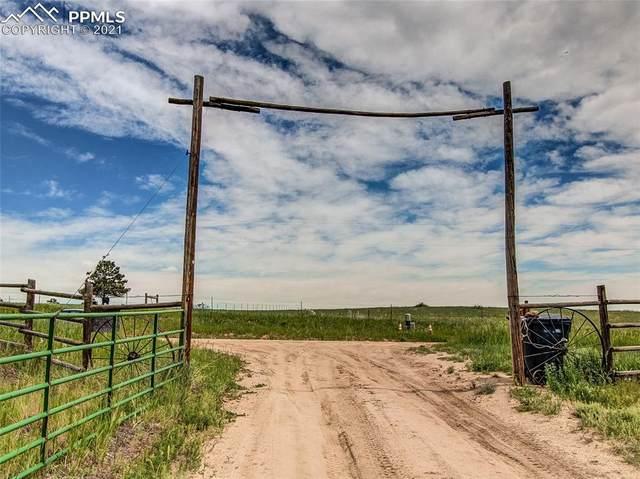 County Road 102 Road, Elbert, CO 80106 (#5042241) :: The Treasure Davis Team   eXp Realty