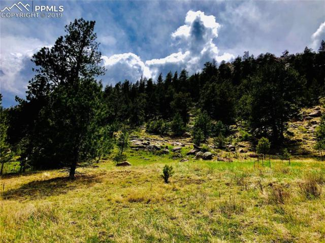 137 Ranch View Drive, Florissant, CO 80816 (#5043345) :: The Peak Properties Group