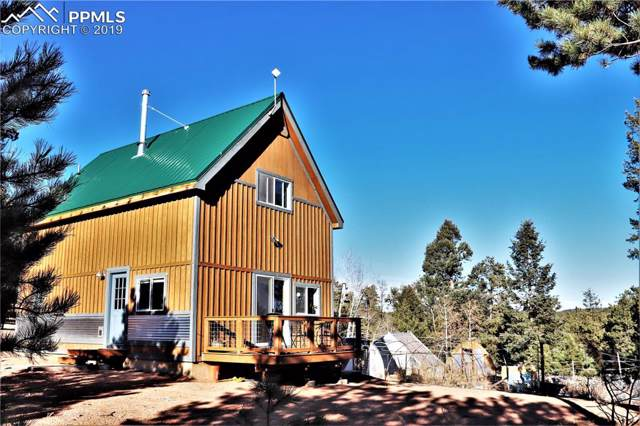 256 Pikes Peak Lane, Florissant, CO 80816 (#5043939) :: Jason Daniels & Associates at RE/MAX Millennium