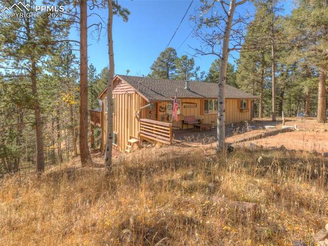 15 Rainbow Lane, Divide, CO 80814 (#5044639) :: The Treasure Davis Team