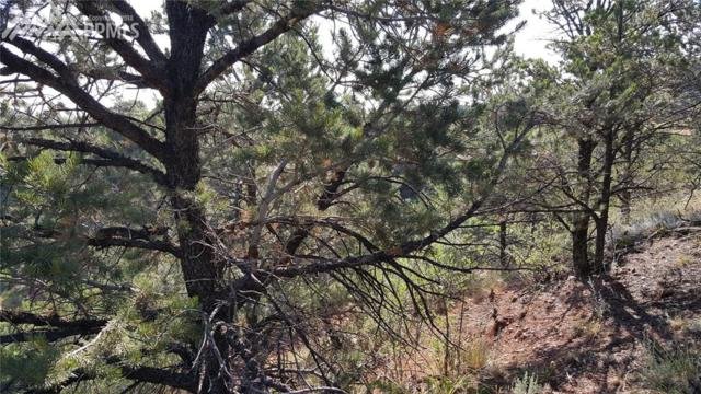 0 Oklahoma Road, Manitou Springs, CO 80829 (#5046765) :: 8z Real Estate