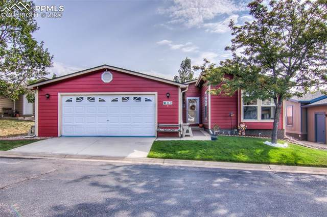 4631 Pine Marten Point, Colorado Springs, CO 80922 (#5050067) :: CC Signature Group