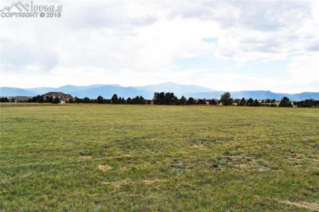 7625 Rannoch Moor Way, Colorado Springs, CO 80908 (#5062659) :: The Treasure Davis Team