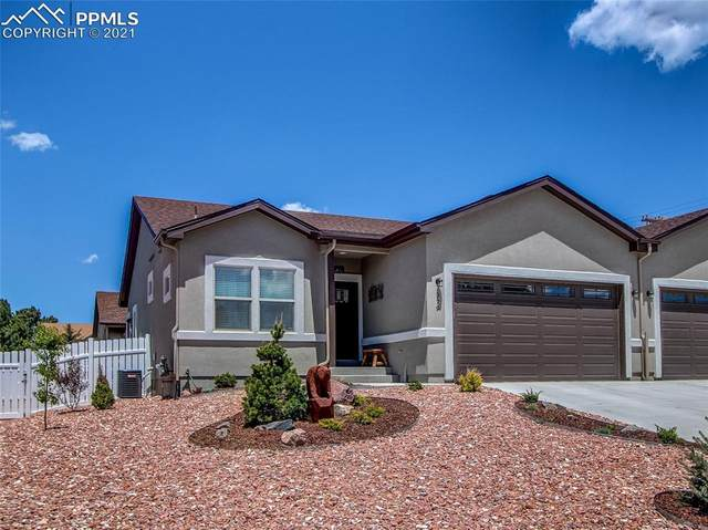 379 Buttonwood Place, Monument, CO 80132 (#5065060) :: The Treasure Davis Team | eXp Realty