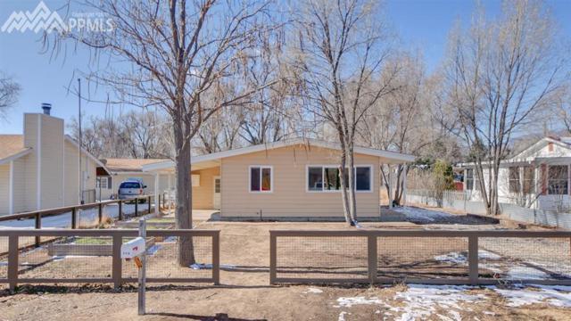 116 Hayes Drive, Colorado Springs, CO 80911 (#5065985) :: RE/MAX Advantage