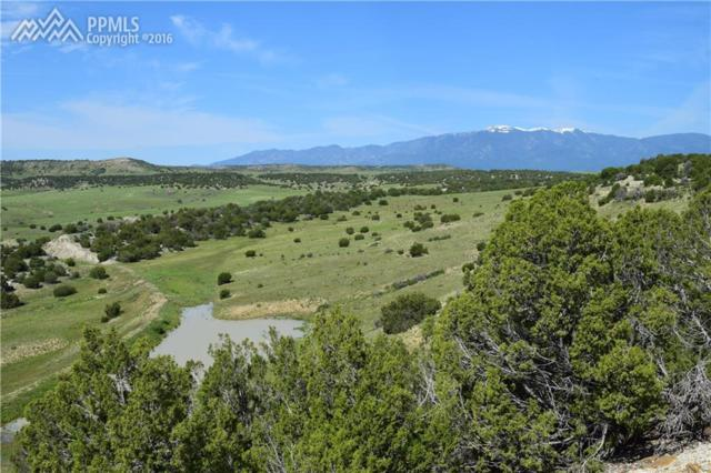 Cedarwood Road, Colorado City, CO 81019 (#5070744) :: Fisk Team, RE/MAX Properties, Inc.
