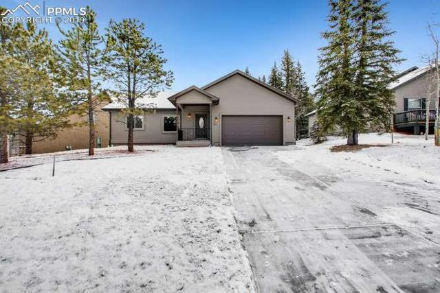 1113 Ptarmigan Drive, Woodland Park, CO 80863 (#5071187) :: Tommy Daly Home Team