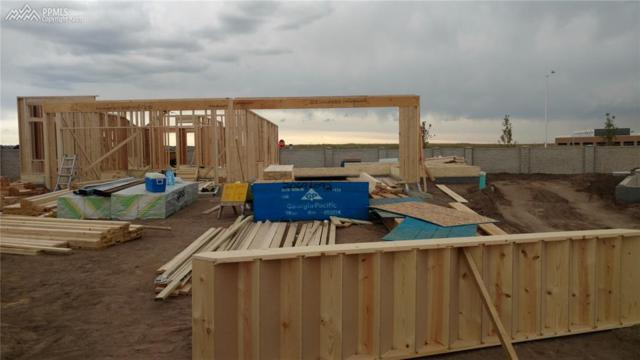 11483 Rill Point, Colorado Springs, CO 80921 (#5071913) :: 8z Real Estate