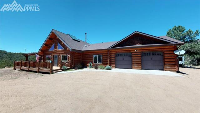 201 Buck Ridge, Canon City, CO 81212 (#5073004) :: 8z Real Estate
