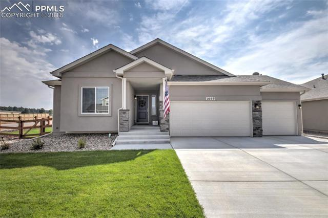 1059 Night Blue Circle, Monument, CO 80132 (#5073081) :: Action Team Realty