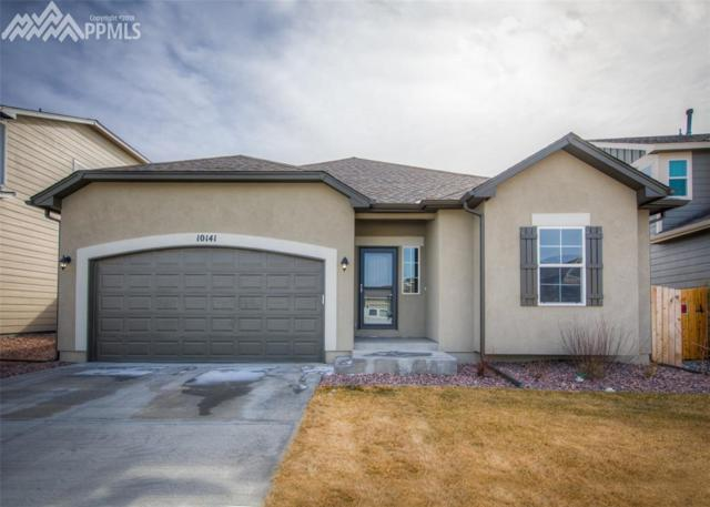 10141 Declaration Street, Colorado Springs, CO 80925 (#5073785) :: RE/MAX Advantage