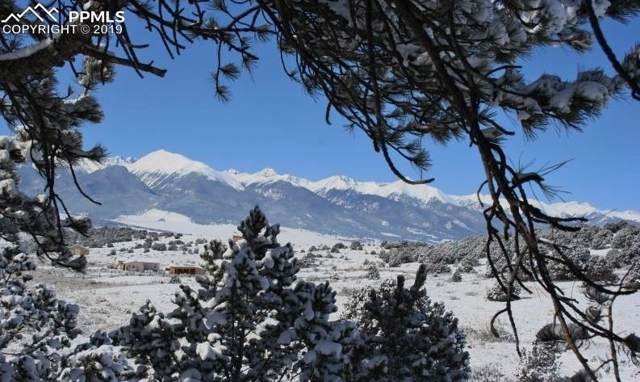 809 Crow Road, Westcliffe, CO 81252 (#5075548) :: The Treasure Davis Team