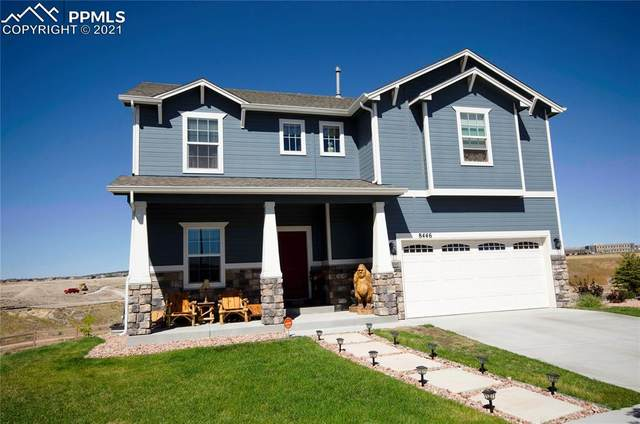 8446 Mayfly Drive, Colorado Springs, CO 80924 (#5075941) :: Tommy Daly Home Team