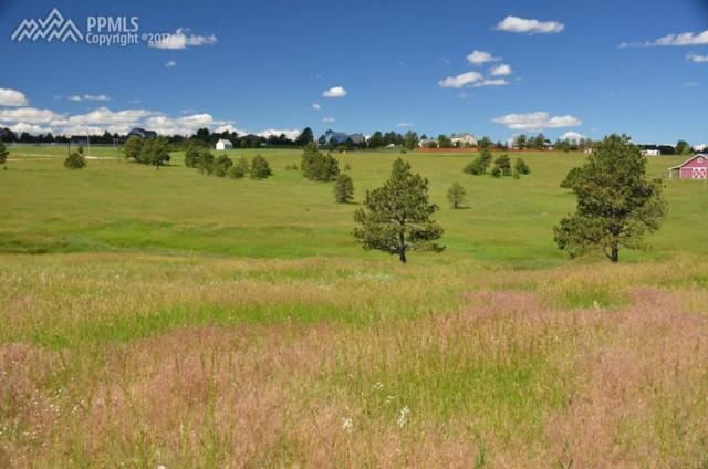 18120 Walker Court, Colorado Springs, CO 80908 (#5077511) :: 8z Real Estate