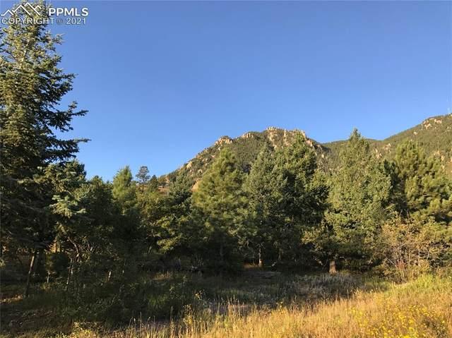 390 Irvington Court, Colorado Springs, CO 80906 (#5078487) :: Venterra Real Estate LLC